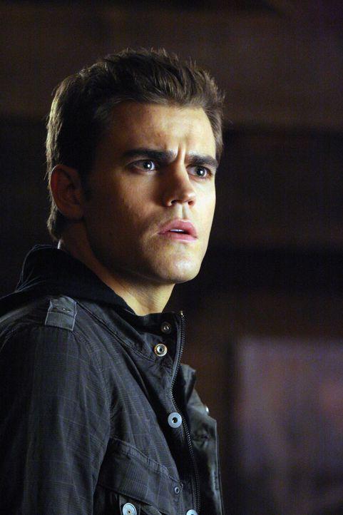 Glaubt seinen Augen kaum zu trauen, als sein fieser Bruder plötzlich auftaucht: Stefan (Paul Wesley) - Bildquelle: Warner Brothers