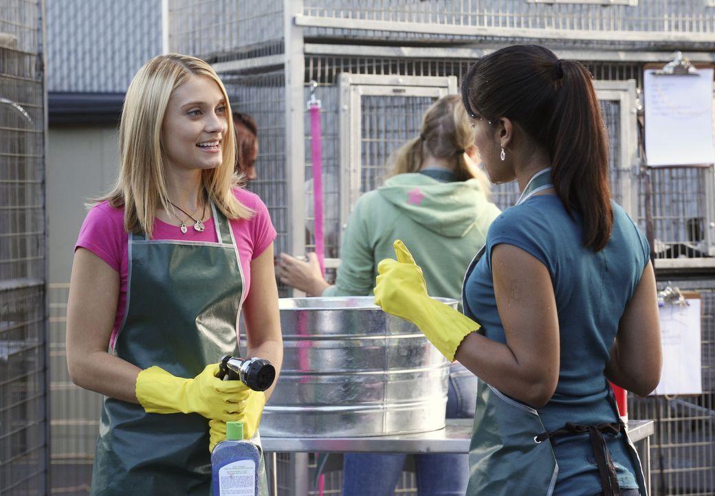 Als Casey (Spencer Grammer, l.) erfährt, dass Rebecca (Dilshad Vadsaria, r.) mit Cappie zusammen ist, ist Ärger vorprogrammiert ... - Bildquelle: ABC Family