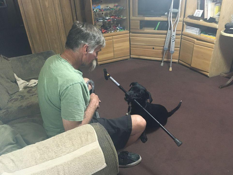 Nate und Laura suchen nach einem Hund für den Veteranen Jesse (Bild), um ihn in seiner eingeschränkten Mobilität zu entlasten. ist Hündin Rose dafür... - Bildquelle: Licensed by Magnify Content Media Ltd.
