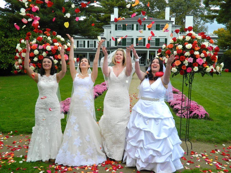 Sehen den vier Hochzeiten erwartungsvoll entgegen: Nicole (l.), Lynette (2.v.l.), Wendy (2.v.r.), Jessica (r.) ... - Bildquelle: Richard Vagg DCL