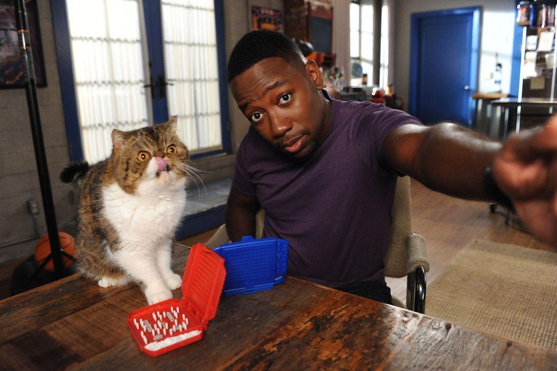 Wenigstens auf seine Katze kann Winston (Lamorne Morris) sich verlassen ... - Bildquelle: 2014 Twentieth Century Fox Film Corporation. All rights reserved.