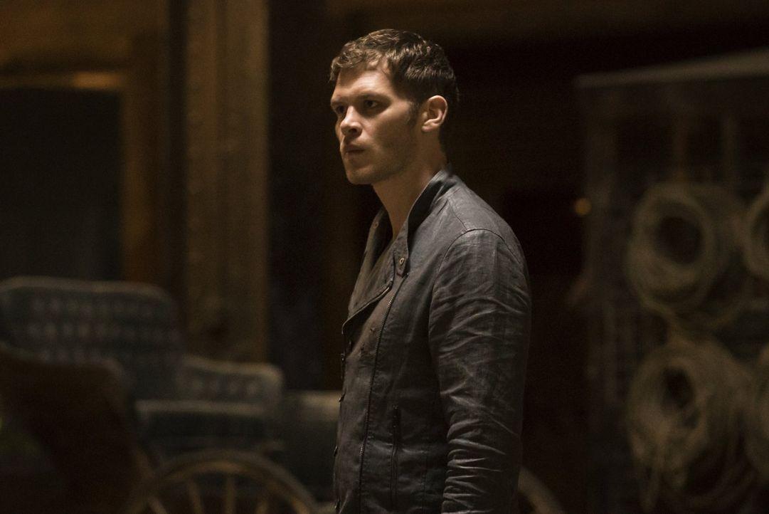 Nach und nach wird Klaus (Joseph Morgan) bewusst, dass er dieses Mal möglicherweise zu weit gegangen ist und nun seine Familie für immer verlieren w... - Bildquelle: Warner Bros. Entertainment, Inc