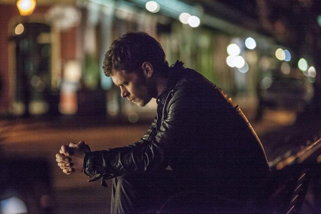 Klaus (Joseph Morgan) ist verzweifelt, denn die Stadt seiner Vorfahren befindet sich nun in den Händen seines ehemaligen Schützlings. Nun überlegt e... - Bildquelle: Warner Brothers