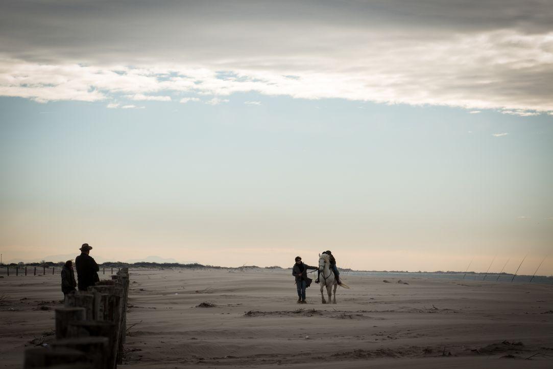 Der Stier - Bildquelle: Eloïse Legay 2018 BEAUBOURG AUDIOVISUEL / TF1 / Eloïse Legay