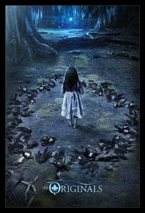 (4. Staffel) - The Originals - Artwork - Bildquelle: Warner Brothers