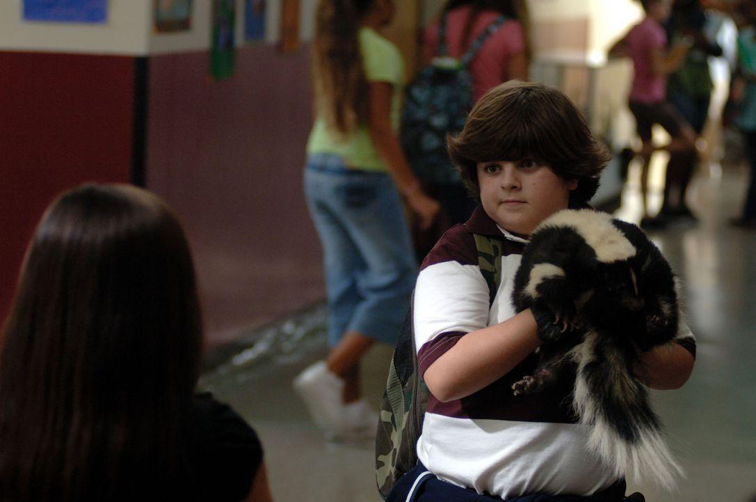 Als seine alleinerziehende Mutter beschuldigt wird, ein Pandababy entführt zu haben, muss Ace Ventura Jr. (Josh Flitter) in die Fußstapfen seines...