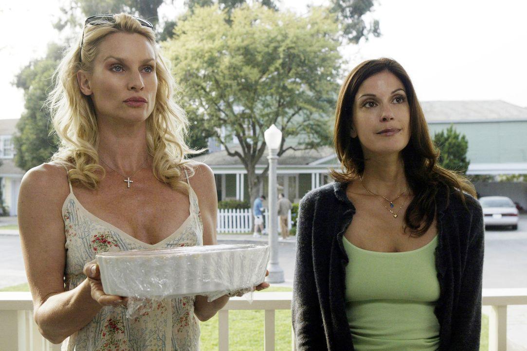 Buhlen um die Gunst des neuen Nachbarn Mike: Edie (Nicolette Sheridan, l.) und Susan (Teri Hatcher, r.) ... - Bildquelle: Touchstone Television
