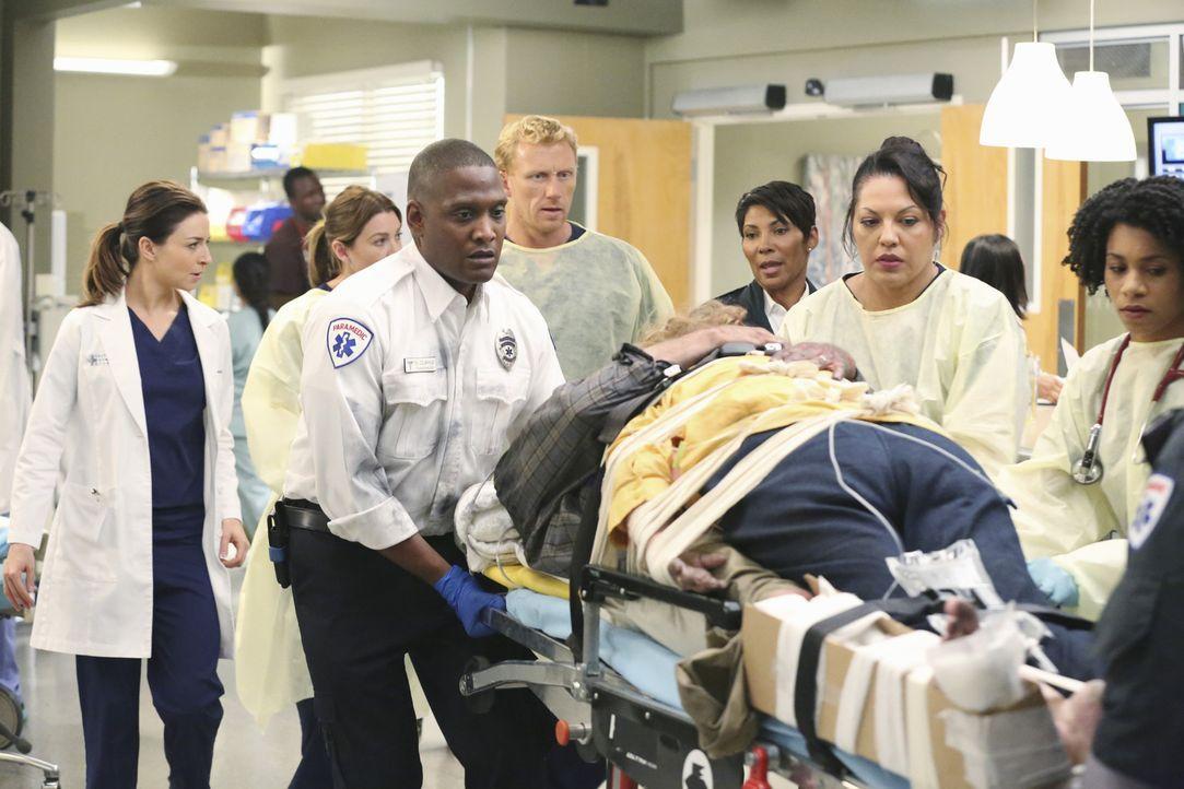 Wahre Liebe: Ein Mann springt mit seiner Frau im Arm aus dem brennenden Haus, um sie zu retten. Ob es dank der Ärzte Callie (Sara Ramirez, 2.v.r.) u... - Bildquelle: ABC Studios