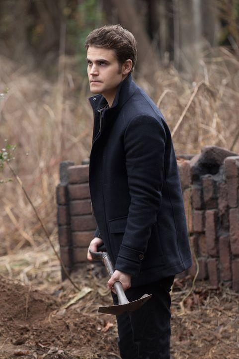 Während Caroline und Matt in Mystic Falls mit den Auswirkungen von Stefans (Paul Wesley) Menschlichkeit zu kämpfen haben, muss dieser um sein Leben... - Bildquelle: Warner Bros. Entertainment, Inc.