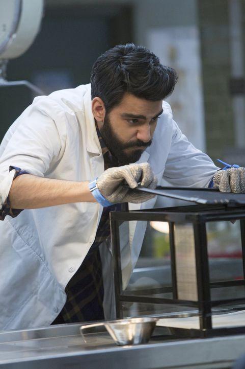 Während Ravi (Rahul Kohli) sich mit der Zombie-Ratte herumärgert, versucht Clive Major zu erklären, dass der Einbruch nicht stattgefunden haben kann... - Bildquelle: Warner Brothers