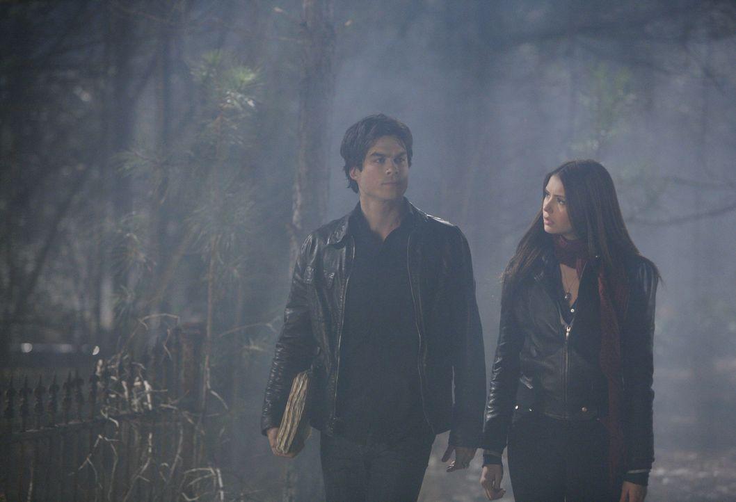 Elena (Nina Dobrev, r.) ist die einzige Person, der Damon (Ian Somerhalder, l.) noch traut ... - Bildquelle: Warner Bros. Television