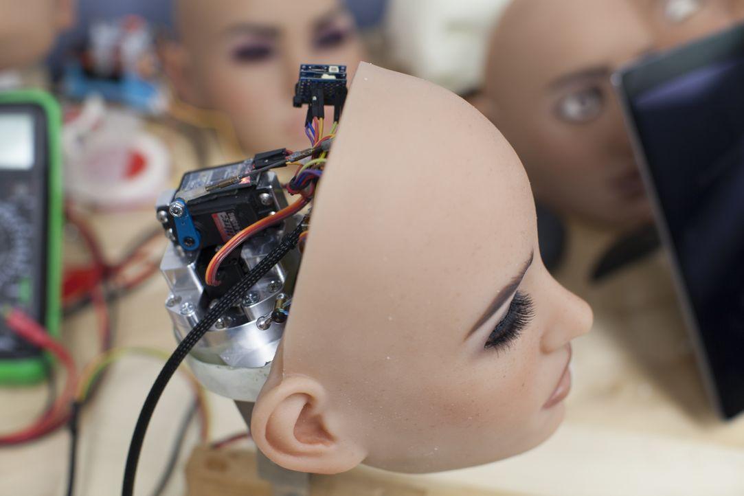 Die Sex-Roboter kommen - Bildquelle: Licensed by Passion Distribution Ltd.