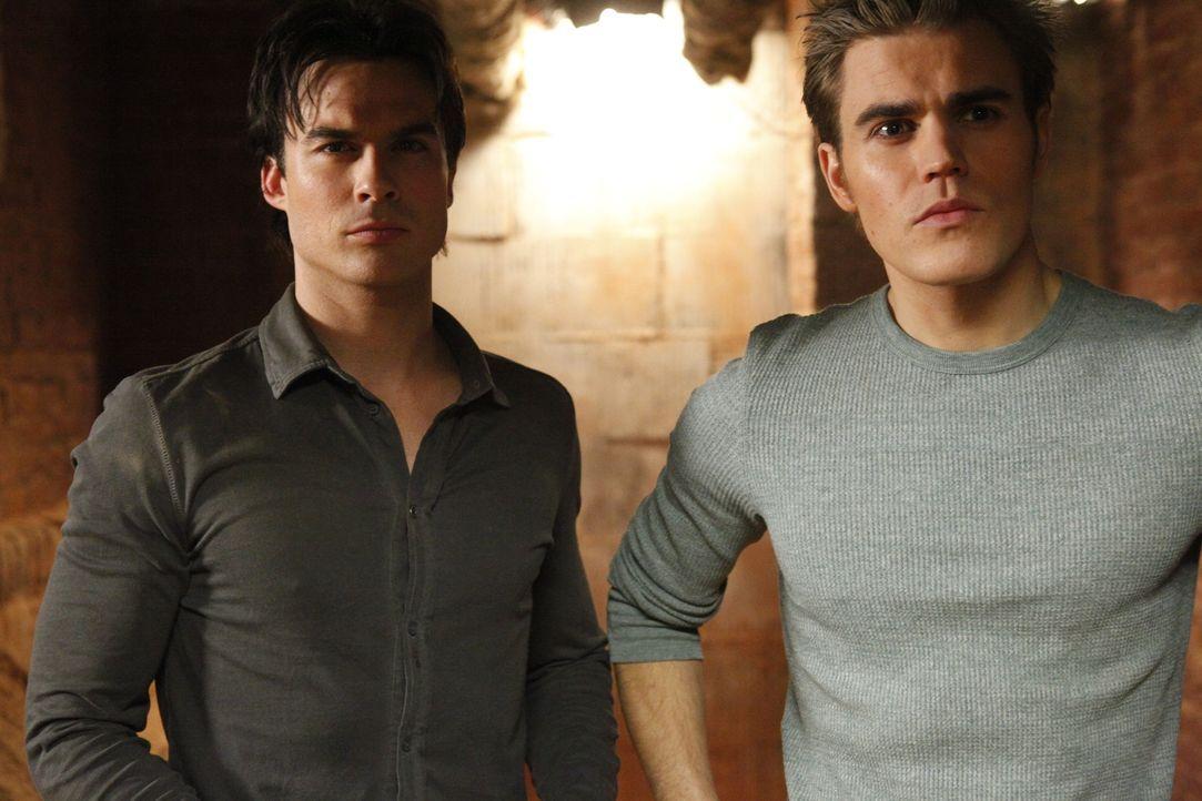 Würden alles für Elenas Sicherheit tun: Stefan (Paul Wesley, r.) und Damon Salvatore (Ian Somerhalder, l.)... - Bildquelle: Warner Brothers