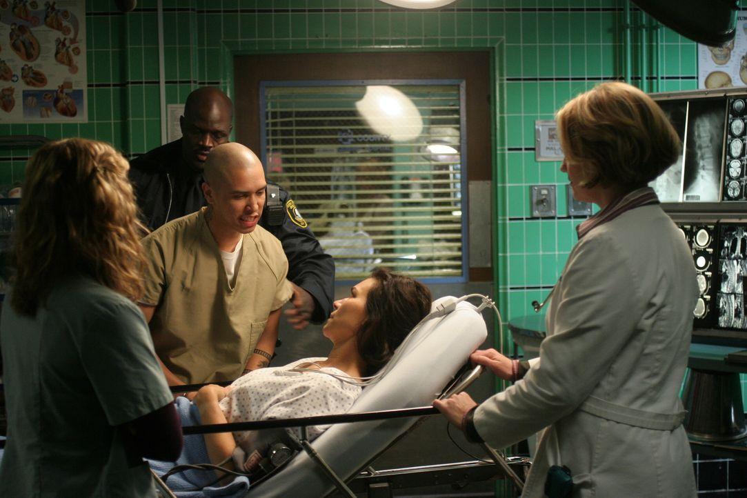 Im Gegensatz zu Sam (Linda Cardellini, l.) versucht Susan (Sherry Strinfield, r.) die Interessen von Elena (Yolanda Lloyd Delgado, liegend) zu verst... - Bildquelle: WARNER BROS