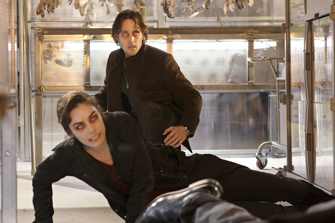 In letzter Sekunde kann Mick (Alex O'Loughlin, hinten) seine Ex-Frau Coraline (Ahannyn Sossamon, vorne) vor dem brutalen Vampir Lance retten. Doch d... - Bildquelle: Warner Brothers