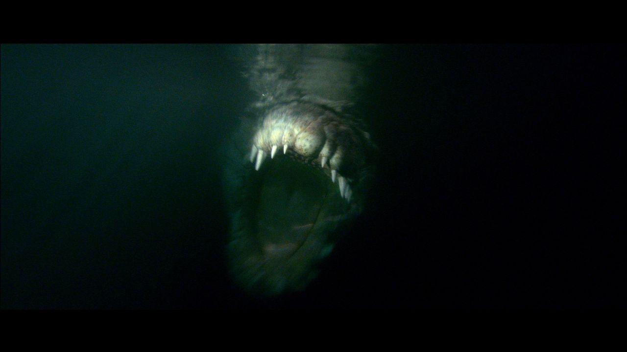 In den Weiten des australischen Salzwassersumpfes lauert ein monströses Krokodil auf Touristen ...
