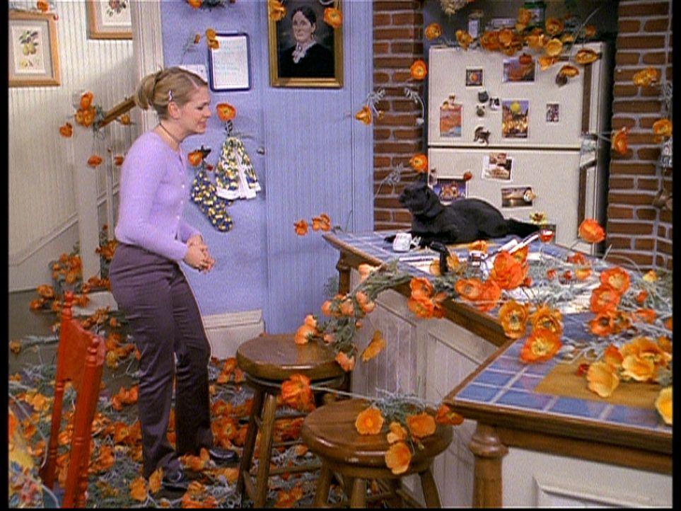 Sabrina (Melissa Joan Hart) hat auf Salems Rat hin Tante Dorma im anderen Reich aufgeweckt. Nun ist das ganze Haus voller Mohnblumen ... - Bildquelle: Paramount Pictures