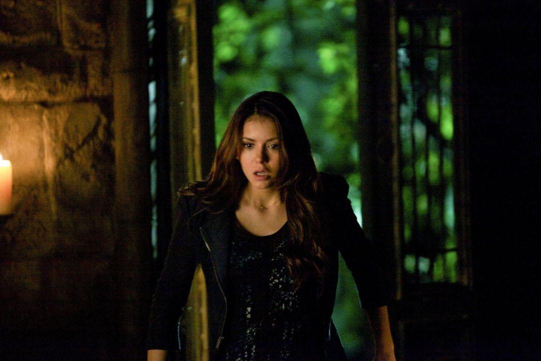 Die Liste der geliebten Menschen, die Elena (Nina Dobrev)  verliert, wird immer länger und die Chancen, die andere Seite zu retten, immer geringer .... - Bildquelle: Warner Brothers