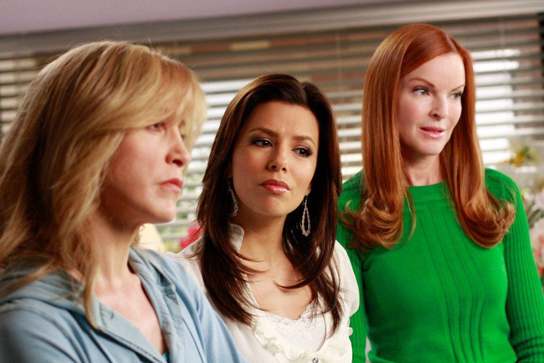 Bree (Marcia Cross, r.), Gabrielle (Eva Longoria, M.) und Lynette (Felicity Huffman, l.) können nicht fassen, wie Mike seinen Sohn taufen möchte und... - Bildquelle: ABC Studios