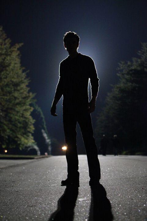 Gerät in große Gefahr: Stefan (Paul Wesley) - Bildquelle: Warner Brothers