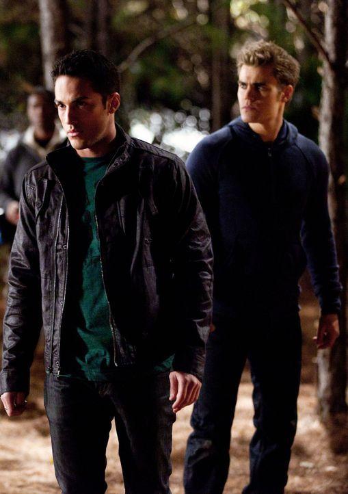 Da Jules und ihre Werwolffreunde in der Überzahl sind, sehen sich Damon und Stefan (Paul Wesley, r.) gezwungen Tyler (Michael Trevino, l.) frei zu l... - Bildquelle: Warner Brothers