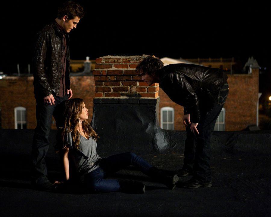 Damon (Ian Somerhalder, r.) kann nicht verstehen, dass sein Bruder Stefan (Paul Wesley, l.) sich weigert, das Blut von Vicki (Kayla Ewell, M.) zu tr... - Bildquelle: Warner Brothers