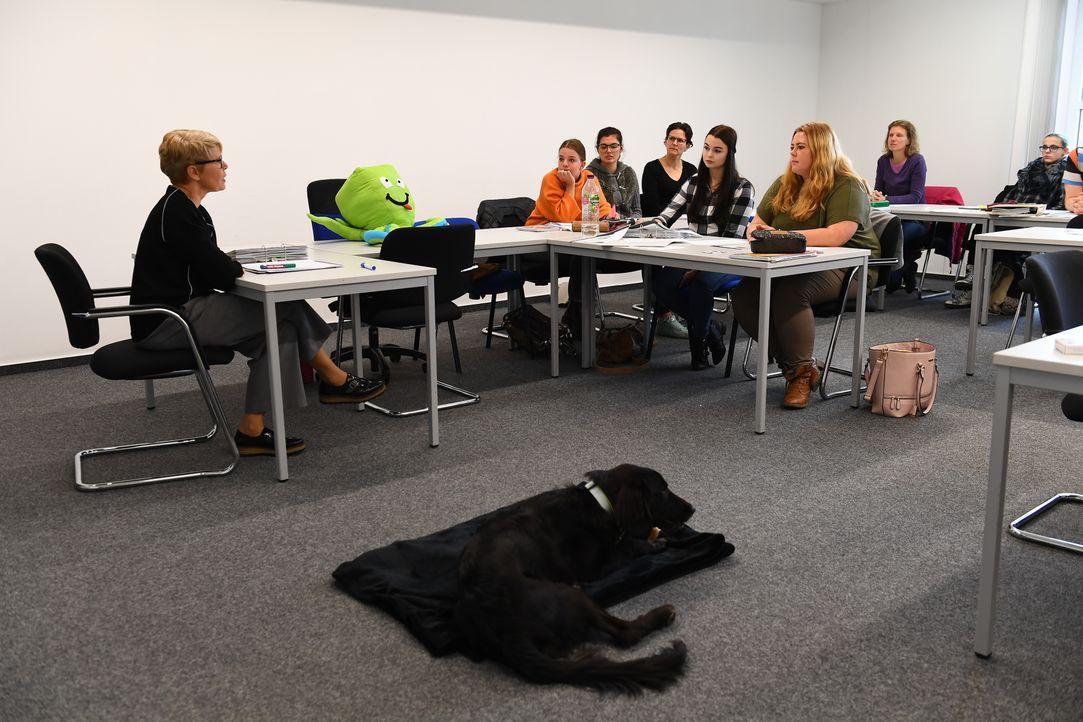 Da Silvia (l.) in ihrem Berufsalltag viel mit anderen Menschen zu tun hat, ist es wichtig, einen Hund zu finden, der ruhig auf fremde Menschen reagi... - Bildquelle: Willi Weber SAT.1 / Willi Weber