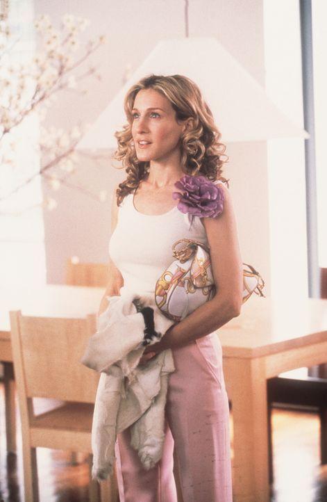 Am nächsten Tag gesteht Carrie (Sarah Jessica Parker) dem Möbeldesigner Aidan, dass ihr die  Sonderkonditionen nicht zustehen ... - Bildquelle: Paramount Pictures