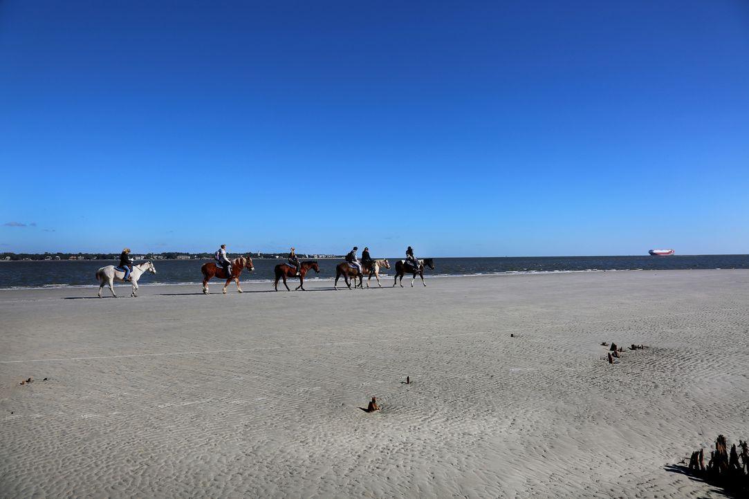 """Mal ein etwas anderer Weg, um zum nächsten Bade-Hotspot zu gelangen: Zu Pferd geht es zum """"Driftwood Beach"""" auf Jekyll Island in Georgia, USA. - Bildquelle: 2017,The Travel Channel, L.L.C. All Rights Reserved"""