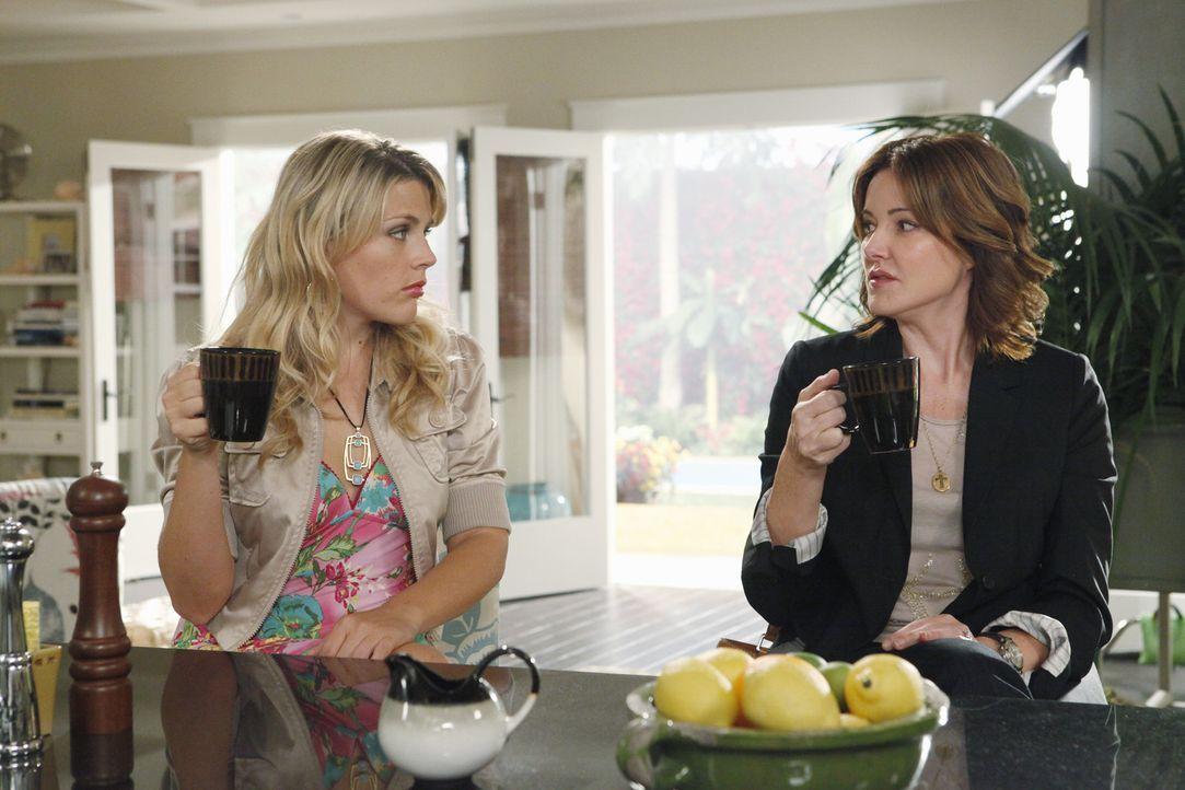 Laurie (Busy Philipps, l.) und Ellie (Christa Miller, r.) werden wohl, trotz gemeinsamer bester Freundin, nie Freundinnen werden ... - Bildquelle: 2009 ABC INC.