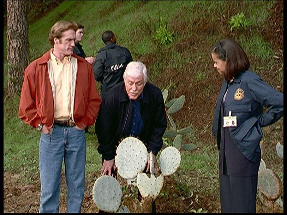 Dr. Mark Sloan (Dick Van Dyke, M.), Steve (Barry Van Dyke, l.) und Amanda (Victoria Rowell, r.) ermitteln im Fall der ermordeten Mary. Mark glaubt,... - Bildquelle: Viacom