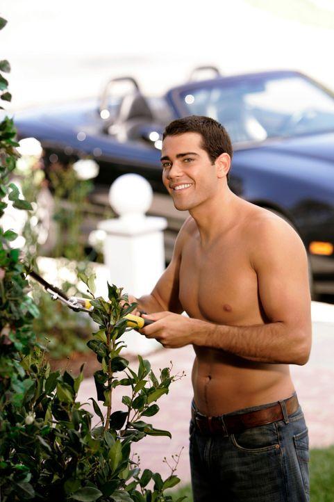 Gabrielles Ergeiz ist geweckt um John (Jesse Metcalfe) zurück zu bekommen ... - Bildquelle: 2005 Touchstone Television  All Rights Reserved