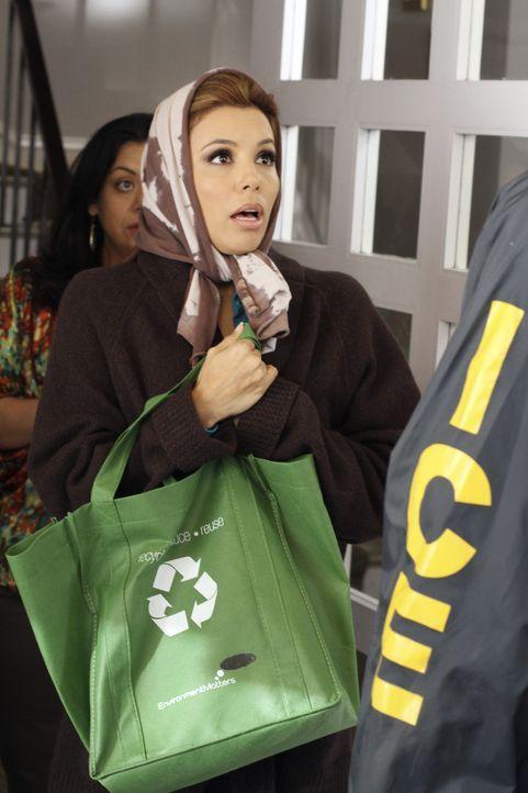 Um Grace und Carmen (Carla Jimenez, l.), die kurz vor der Abschiebung stehen, zu helfen, lässt sich Gabrielle (Eva Longoria, r.) was ganz besonderes... - Bildquelle: ABC Studios