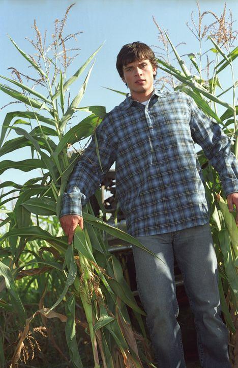 Clark (Tom Welling) bittet Pete darum, Stillschweigen über seine Entdeckung zu bewahren ... - Bildquelle: Warner Bros.