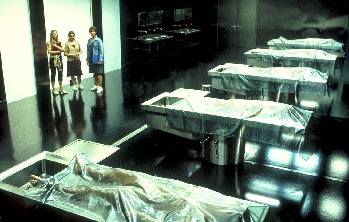 Der Eid des Hippokrates verpflichtet zur bedingungslosen Erhaltung des menschlichen Lebens. Doch  nicht alle Mediziner halten daran bedingungslos fe... - Bildquelle: Columbia Pictures