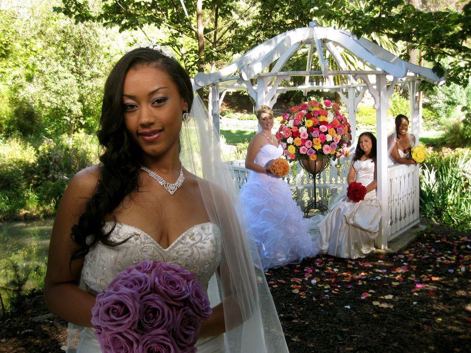 Wird Jennifer (l.) Hochzeit ihre Konkurrentinnen Christa (2.v.l.), Araceli  (2.v.r.) und Kale (r.) aus den Socken hauen? - Bildquelle: Richard Vagg DCL
