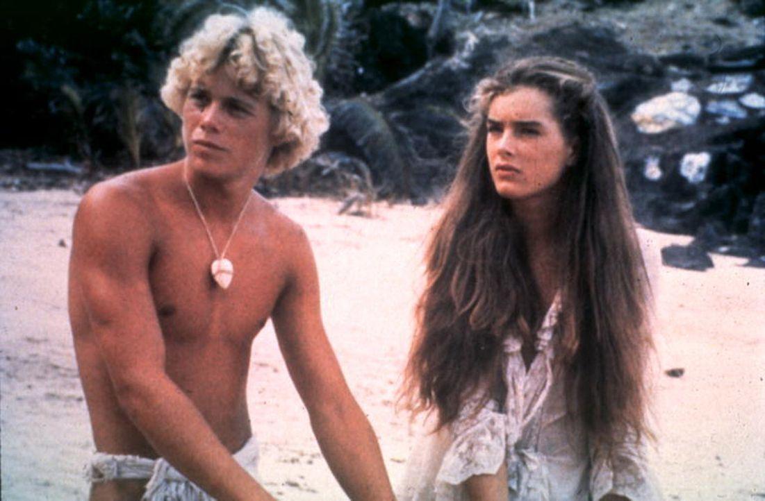 Inzwischen herangewachsen, haben sich Richard (Christopher Atkins, l.) und Emmeline (Brooke Shields, r.) auf der Insel häuslich eingerichtet ... - Bildquelle: Columbia Pictures