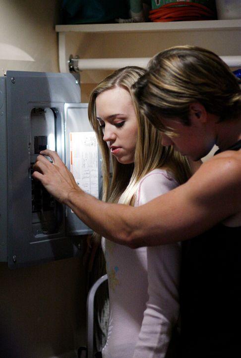 Kommen sich näher: Julie (Andrea Bowen, l.) und Austin (Josh Henderson, r.) ... - Bildquelle: 2005 Touchstone Television  All Rights Reserved