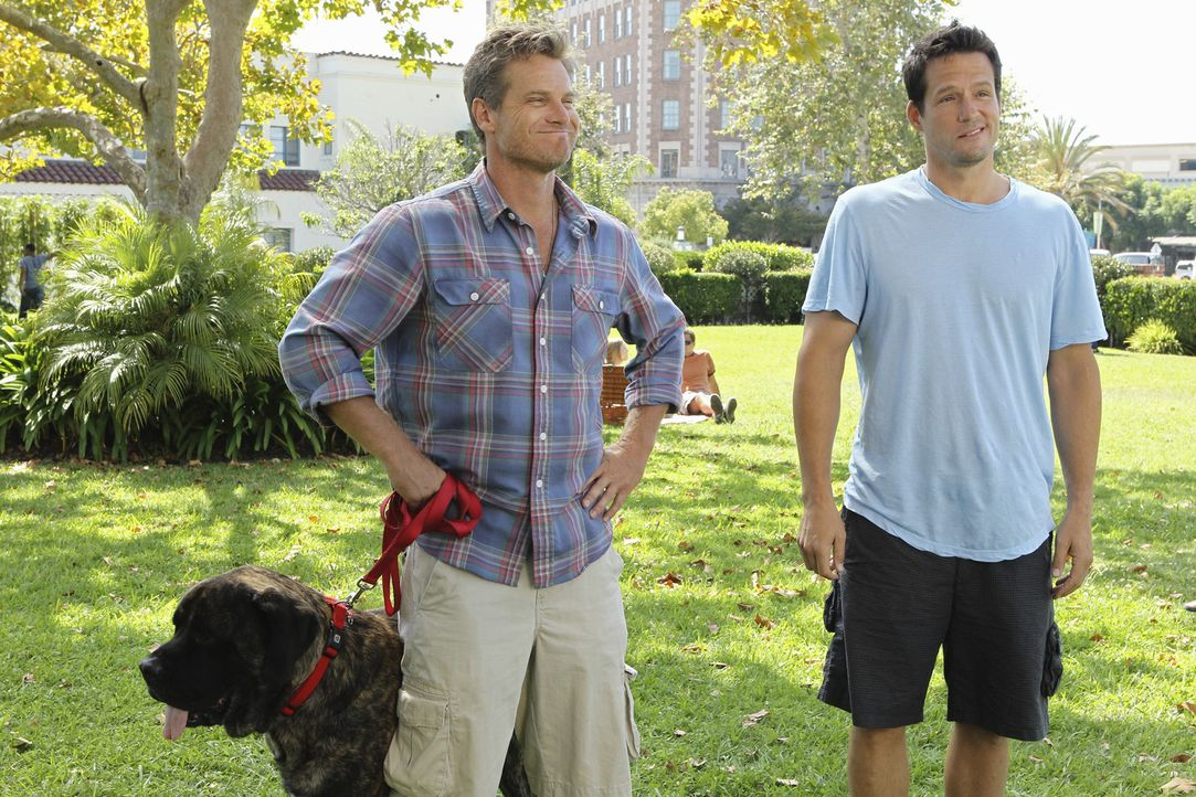 Während Jules eine neue Therapeutin hat, fällt es Bobby (Brian Van Holt, l.) schwerer, als zunächst angenommen zu akzeptieren, dass sie nun in ei... - Bildquelle: 2010 ABC INC.
