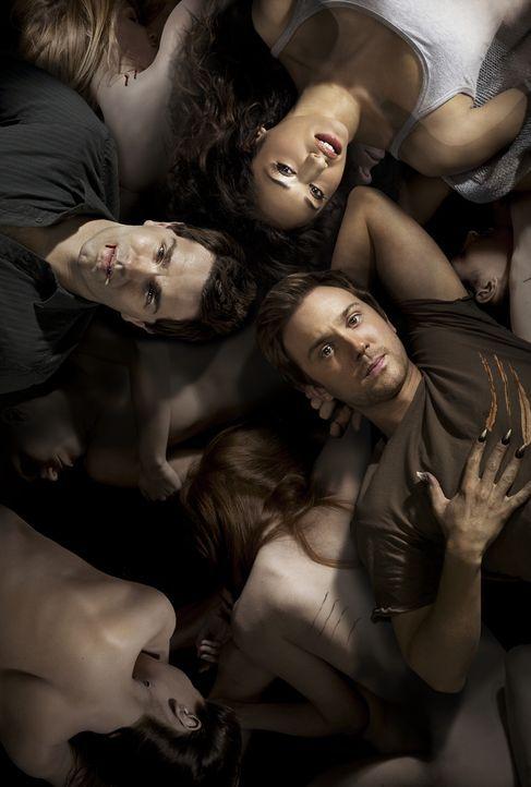 (3. Staffel) - Haben ein dunkles Geheimnis: Aidan (Sam Witwer, l.), Josh (Sam Huntington, r.) und Sally (Meaghan Rath, oben) ... - Bildquelle: 2013 B.H. 2 Productions (Muse) Inc. ALL RIGHTS RESERVED.