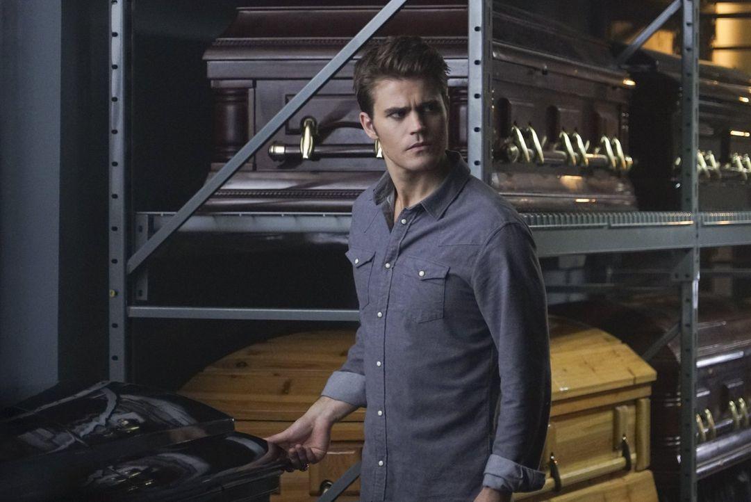 Eine unerwartete Neuigkeit wirft Stefan (Paul Wesley) vollkommen aus der Bahn ... - Bildquelle: Warner Bros. Entertainment, Inc.