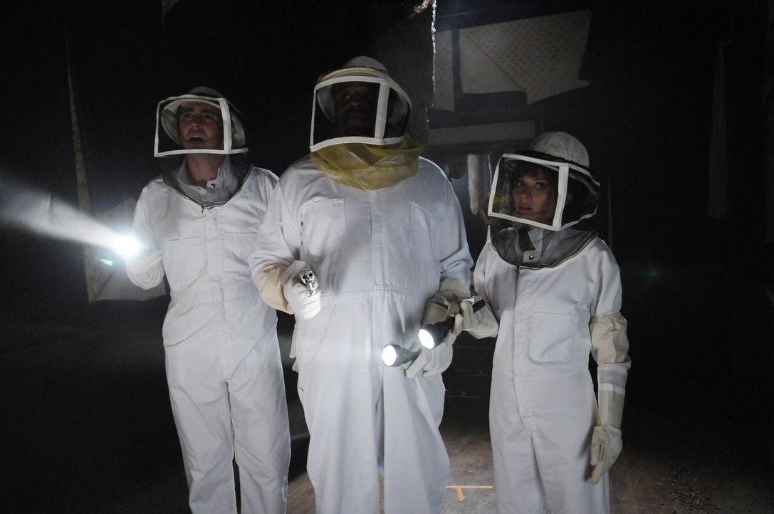 Kentucky Fitz, eine Angestellte von Betty's Bienen, ist gestorben: Ein Bienenschwarm hat sie zu Tode gestochen. Chuck (Anna Friel, r.), Ned (Lee Pac... - Bildquelle: Warner Brothers