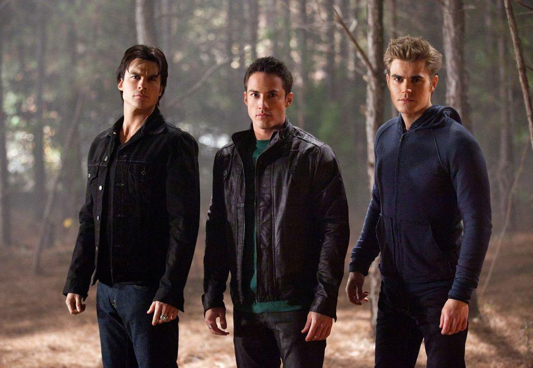 Caroline wurde von Jules und ihrem Freund Brady entführt und gefoltert, doch Damon (Ian Somerhalder, l.), sein Bruder Stefan (Paul Wesley, r.) und T... - Bildquelle: Warner Brothers