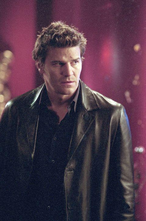 Die ehemalige Gang zwingt Cordelia, Angel (David Boreanaz) zu holen, den Gunn töten soll. - Bildquelle: 20th Century Fox. All Rights Reserved.