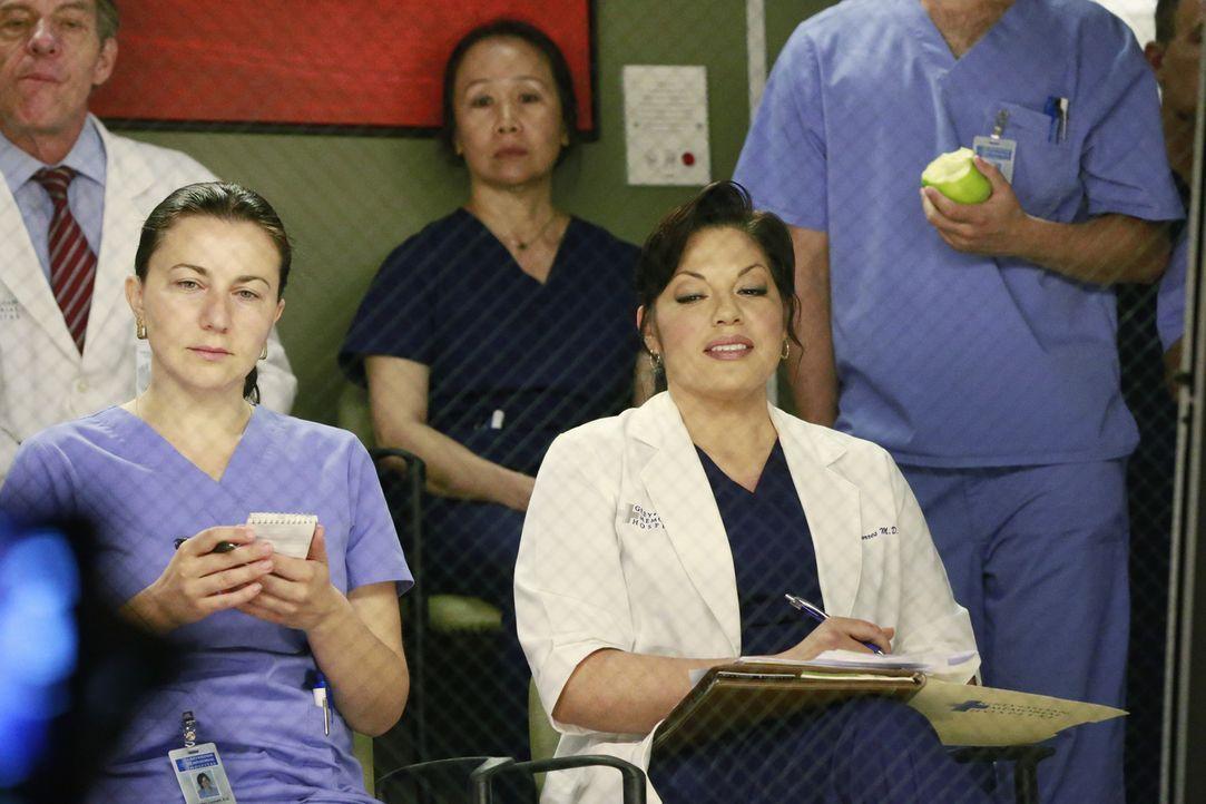 Ahnt noch nicht, dass sie Amelia bei einer Operation zur Hilfe eilen muss: Callie (Sara Ramirez, vorne r.) ... - Bildquelle: ABC Studios