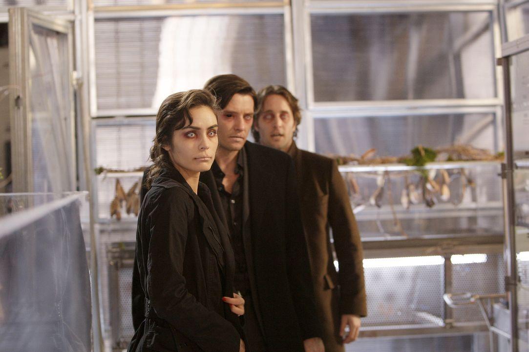 Wenn Vampire ihren Durst stillen müssen, ist niemand vor ihnen sicher: Mick (Alex O'Loughlin, hinten), Lance (Jason Butler Harner, M.) und Coraline... - Bildquelle: Warner Brothers