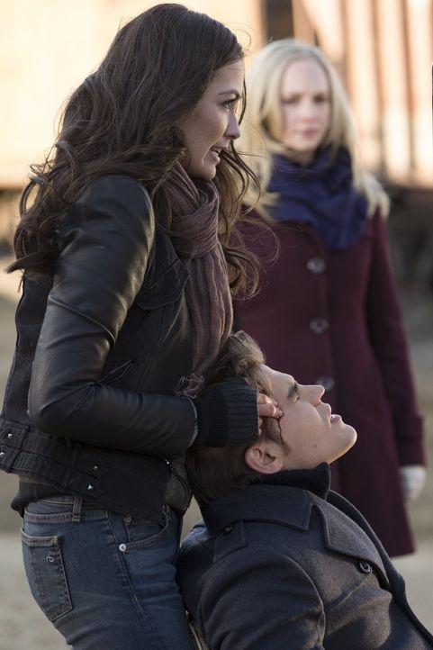 Als Caroline (Candice Accola, hinten) Stefan (Paul Wesley, r.) zu der Travellerin Sloan (Caitlin McHugh, l.) führt, bekommen sie endlich die Informa... - Bildquelle: Warner Brothers