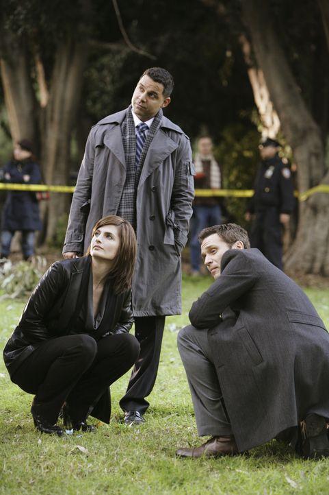 Kate (Stana Katic, l.), Javier (Jon Huertas, M.) und Kevin (Seamus Dever, r.) stoßen auf einige Ungereimtheiten im aktuellen Fall ... - Bildquelle: ABC Studios