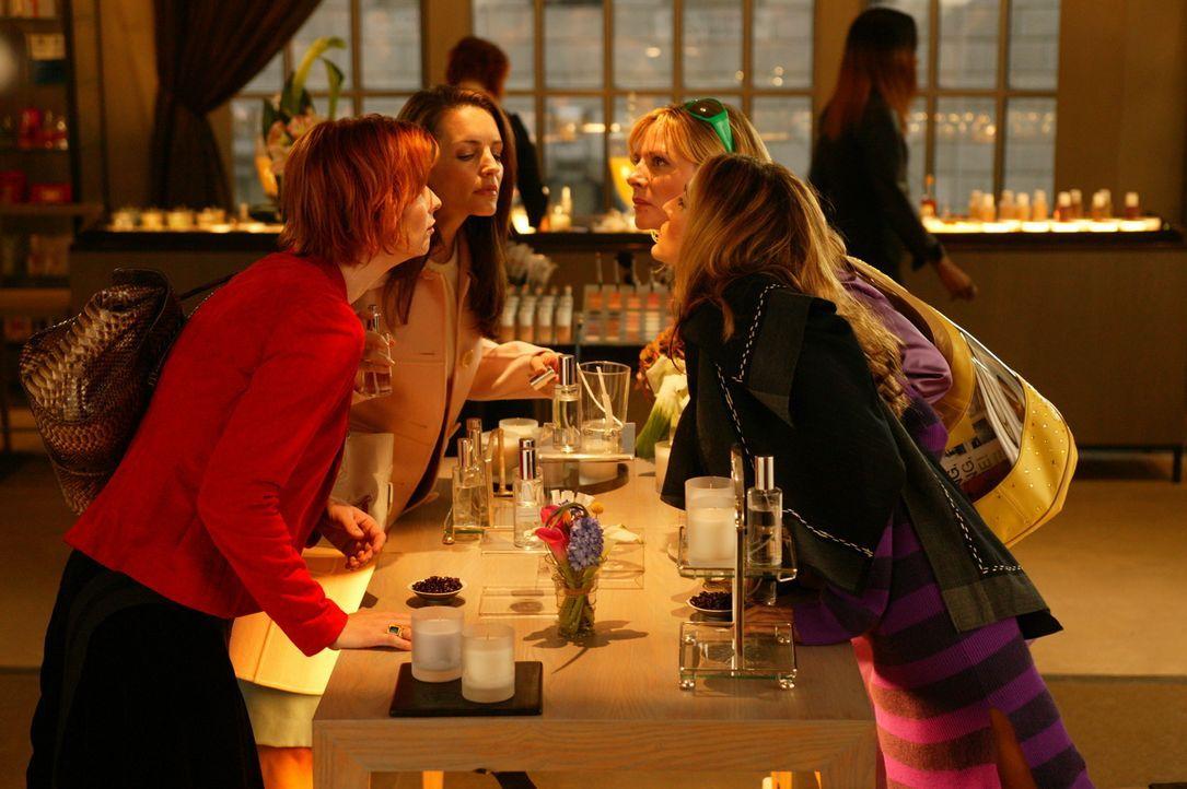 Schnuppern Miranda (Cynthia Nixon, l.), Charlotte (Kristin Davis, 2.v.l.), Samantha (Kim Cattrall, 2.v.r.) und Carrie (Sarah Jessica Parker, r.) den... - Bildquelle: Paramount Pictures