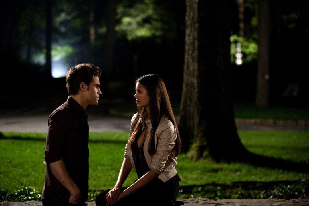 Kommen sich näher: Stefan (Paul Wesley, l.) und Elena (Nina Dobrev, r.) - Bildquelle: Warner Brothers